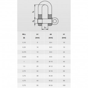 D Shackle Short Form Stainless Steel